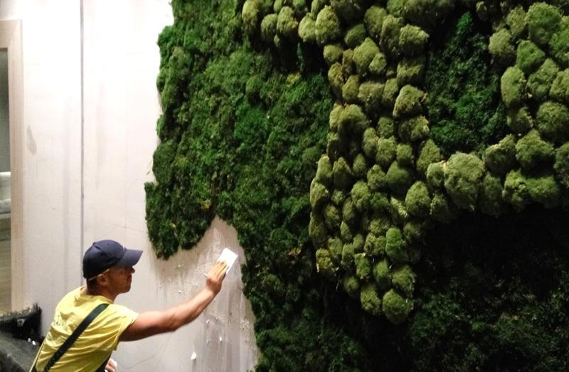 yosun duvar